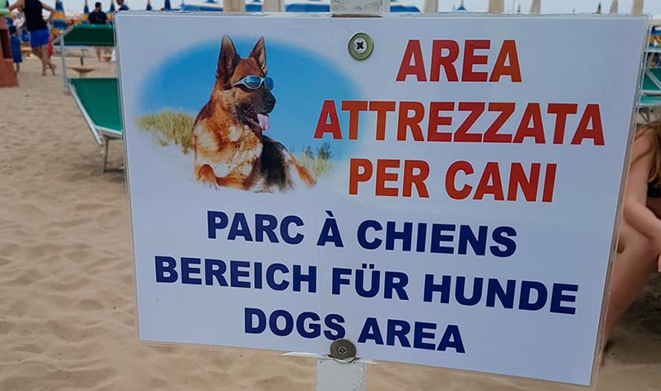 """Votre Hôtel """"Pet Friendly"""" à Bellaria!"""